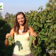 International Vine & Wine Programme – Tuscany 10-12.09.2018