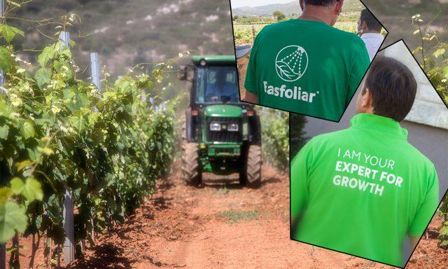 Vine-Wine Programme –  COMPO EXPERT Hellas S.A.